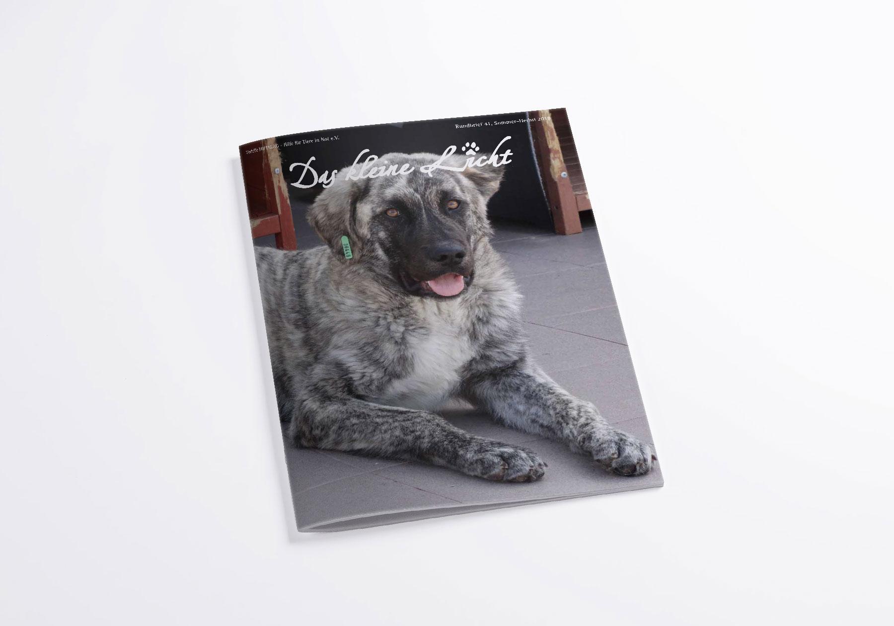 Tierhilfe Hoffnung Facebook