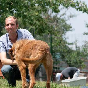 SWR1 Leute – Matthias Schmidt: Leitet in Rumänien größtes Tierheim der Welt