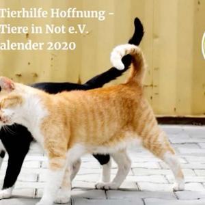 Tierhilfe Hoffnung Fotokalender 2020