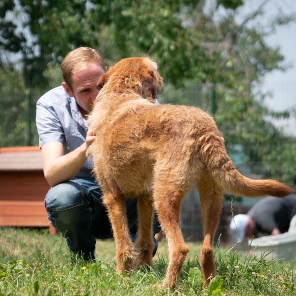 Tierhilfe Hoffnung 1